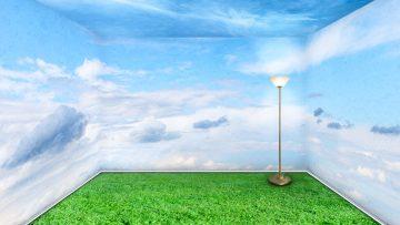 Zła jakość powietrza – prawda czy fałsz?
