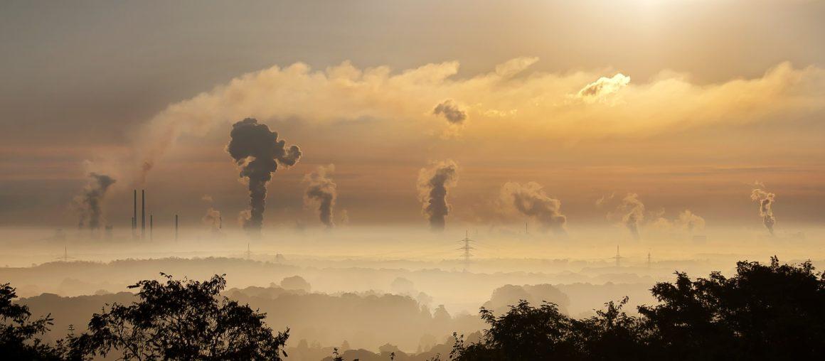 Jak przedsiębiorstwa zatruwają środowisko?