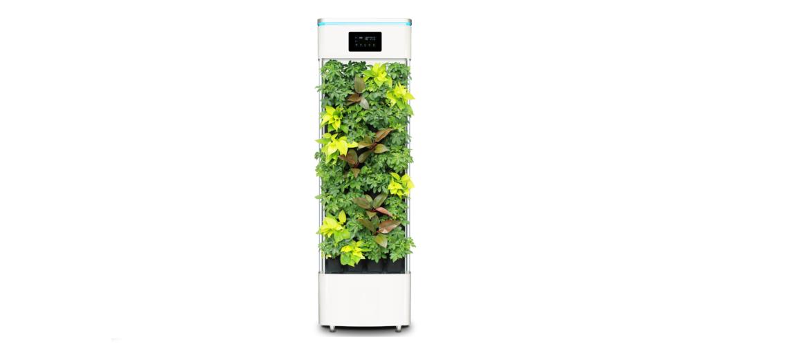 Nowy oczyszczacz powietrza i co dalej z nim zrobić?