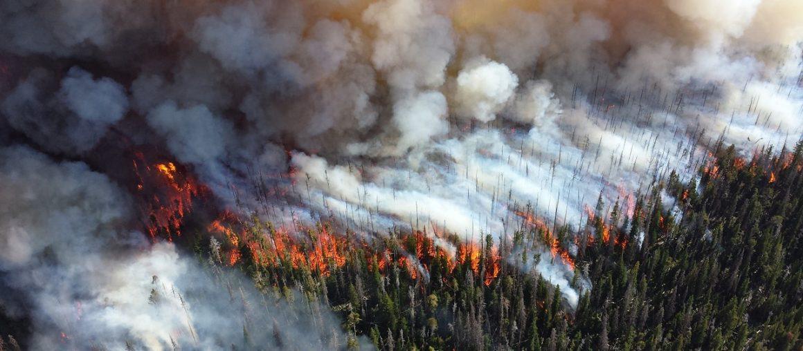 Jaki wpływ na jakość powietrza i nasze zdrowie ma dym z pożarów?