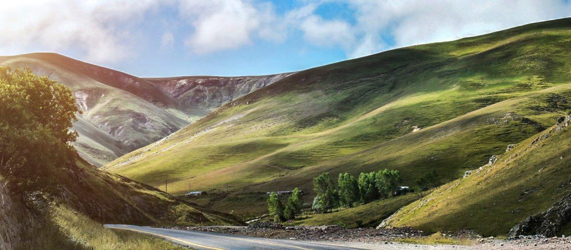 Islandia. Orca pochłania CO2 lepiej niż drzewa